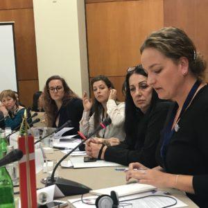 Styrelsesmedlem Signe Vahlun i Beograd